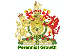 Perennial Growth Financial Services logo